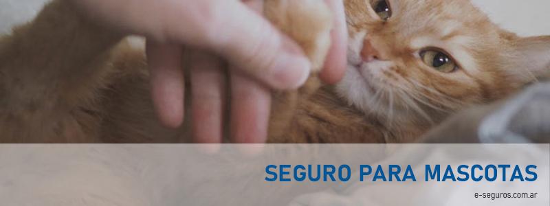 Metlife Seguros para mascotas